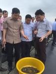 """Bộ trưởng Bộ NN&PTNT thăm những """"cánh đồng"""" tôm trên cát ở Hà Tĩnh"""
