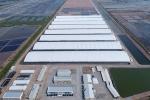 Thành lập Khu Nông nghiệp ứng dụng công nghệ cao tại Bạc Liêu