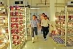 Uni-President Việt Nam: Ưu việt như vi sinh Uni-Light