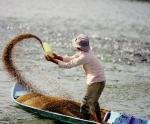 Thức ăn thủy sản: Siết chặt quản lý