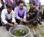 Nuôi trồng thủy sản ở miền Trung: Để hiệu quả mà vẫn bền vững