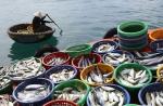 Sản lượng thủy sản tháng 7 ước hơn 6,7 triệu tấn