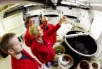 Sản xuất copepod quy mô công nghiệp