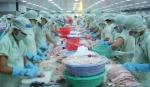 """Xuất khẩu cá tra cần """"giành lại"""" tăng trưởng từ Mỹ và EU"""