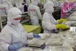Quy định nhập khẩu thủy sản tại một số thị trường chính