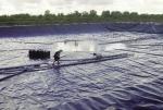 Nuôi siêu thâm canh: Nhân tố mới trong ngành tôm Cà Mau