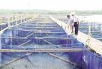Quản lý thủy sản mùa mưa bão