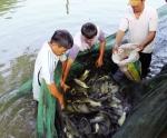 Điều tra nguồn lợi thủy sản nội đồng