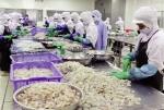 Hợp tác tăng cường thương mại thủy sản Việt – Hàn