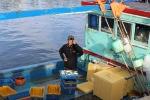 Thuyền về cá đầy khoang