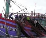 Kỳ 2: Một số điều ngư dân cần biết khi hoạt động khai thác thủy sản trên các vùng biển