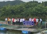 Điện Biên: Tập huấn kỹ thuật nuôi một số loài cá nước ngọt phổ biến