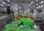 Tiêu chuẩn nước thải 'hại' nhà máy thủy sản