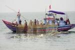 Quảng Ngãi: Quyết tâm khai thác hải sản đúng luật