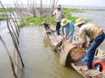 An Giang trước nguy cơ nguồn lợi thủy sản tự nhiên ngày một cạn kiệt