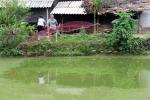 Nuôi cá leo trong ao đất, mô hình cá da trơn nhiều hứa hẹn tại Nghệ An
