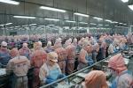 Minh Phú: Công ty thủy sản lớn thứ 53 trên thế giới