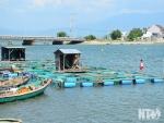 Nuôi trồng thủy sản hướng đến phát triển bền vững