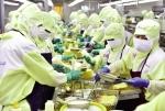 An toàn thực phẩm: Tầm quan trọng toàn cầu