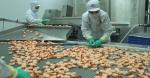 Quy định mới về xuất khẩu tôm sang Australia