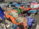 TPHCM tập trung ứng phó với bão Tembin