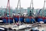 95% tàu thuyền ở Nghệ An được đăng kiểm