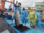 Ghi nhật ký khai thác thủy sản: Việc quan trọng nhưng chưa được xem trọng