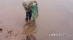 Lạnh thấu xương 8 độ, ngư dân run rẩy lội sình lầy bắt ngao, sò
