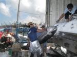 Nhân đôi niềm vui đánh bắt cá ngừ đại dương