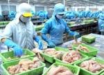USDA công nhận hệ thống pháp luật quản lý cá da trơn của Việt Nam tương đương với Hoa Kỳ