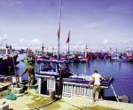 Lao động biển Quảng Ngãi: Kẻ đỏ mắt tìm, người xa xứ