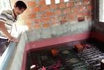 Kỹ thuật nuôi lươn thương phẩm không bùn