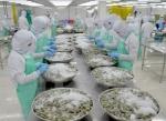 Xuất khẩu tôm sang Hàn Quốc nhiều khả quan