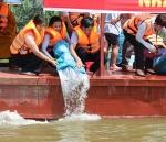 Chung tay tái tạo nguồn lợi thủy sản