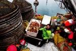 Trident Seafoods - một thay đổi cho ngành khai thác