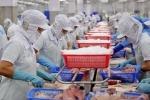 Xuất khẩu cá tra sang Trung Quốc sẽ giữ đà tăng trong thời gian tới