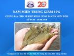 Công ty TNHH Đầu tư Thủy sản Nam Miền Trung: Giảm 10% giá tôm giống hỗ trợ người nuôi vượt khó