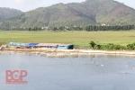 Bắc Giang: Đẩy mạnh phát triển chăn nuôi thủy sản
