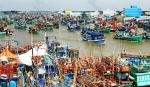 Bình Định: Nỗ lực truy xuất nguồn gốc thủy sản tại cảng