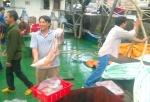 Tàu vỏ thép 67 Bình Định vươn khơi ăn nên làm ra, có chuyến kiếm 1 tỷ đồng