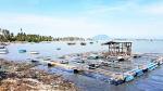 Hỗ trợ thiệt hại nuôi trồng thủy sản do bão ở Vạn Ninh: Không trường hợp nào đủ điều kiện