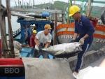 Phát triển kinh tế biển, đảo gắn với đảm bảo quốc phòng - an ninh