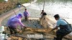 Hiệu quả của các mô hình hợp tác xã nuôi trồng thủy sản