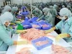 Dự báo xuất khẩu cá tra sang Brazil sẽ tăng trưởng cuối năm