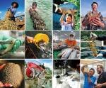 10 năm: Đồng hành cùng ngành thủy sản