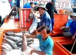 Quảng Nam: Để phát triển nghề cá bền vững