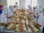 Xuất khẩu mực, bạch tuộc sang các thị trường chính giảm