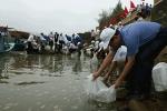 Hướng tới kỷ niệm 60 năm ngày truyền thống ngành thủy sản