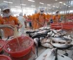 Nỗ lực tạo vị thế của cá tra Việt Nam