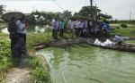 Bắc Giang: Tập huấn nuôi cá rô phi theo VietGAP gắn với tiêu thụ sản phẩm
